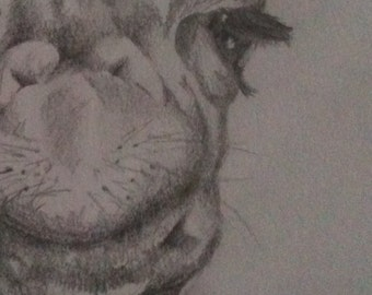 This gorgeous graphite artwork of an African Giraffe is hand sketched, if you love animals and are looking for an art piece in your home.