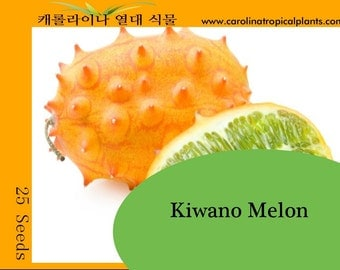 Kiwano Melon (Horned Melon) seeds - 25 Seed Count