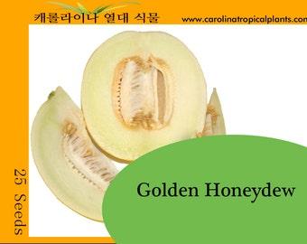Golden Honeydew seeds - 25