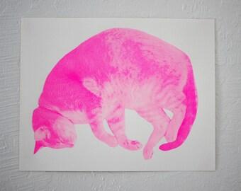 """The Cat's Dream - 11"""" x 14"""" silkscreen print"""