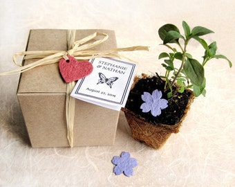 15 Plantable Wedding Favors with Biodegradable Pots and Flower Seed Paper - Favor Boxes - Herb Seed Planting Kit - Baby Shower Favors