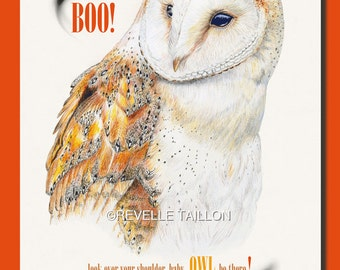 Barn Owl Halloween Card 5 x 7 inches   Boo