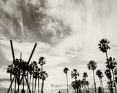 sale 25% off photography, Venice Beach photo, black and white photograph, palm trees, LA, Los Angeles, California beach, boys room decor, gr