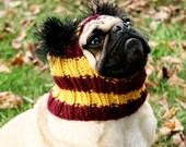 Gryffindor Dog Hat