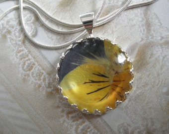 Yellow & Purple Pansy Real Pressed Flower Crown Pendant Under Glass-Nature's Wearable Art-Symbolizes Loyalty-Gifts Under 25