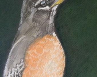Robin - Original Painting by Jamies Art 8x10