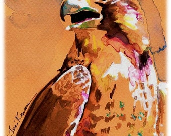 POSTER SIZED Peregrine Falcon Watercolor Print, Artist Signed