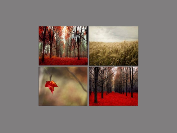 SALE, Fall Wall Decor, Rustic Wall Art, Red, Gold, Set 4 Prints, Nature Photography, Red Trees, Autumn, Red Forest