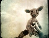 Lonely Toy Photo, Moody 5x5 8x8 10x10 13x13 Art Photo Fine Art Print, teddy bear, Vintage style Photography. Goth Home Decor light sepia