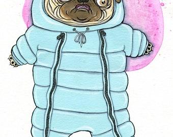 Snowsuit Pug