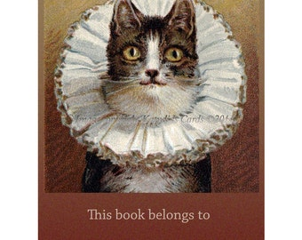 Cat Bookplates | Pack of Ten | Tiger Cat in Lace Collar