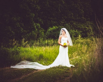 Royal Cathedral Length Illusion Tulle Wedding Veil