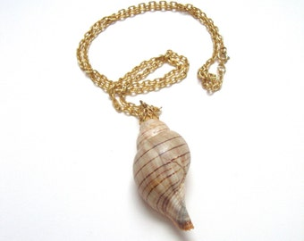 Vintage Shell Necklace : spiral shell vintage gold seashell necklace
