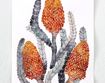 Watercolor Painting, Banksia Nature Art, Giclee Art Print, Archival Art Print - Banksia Protea