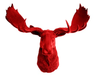 Faux Taxidermy Red Moose Head - The Rosie - Red Resin Moose Head- Chic Animal Wall Hangings & Charming Ornaments by White Faux Taxidermy