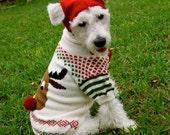 "A ""Rudy"" Christmas Sweater in Alpaca wool"