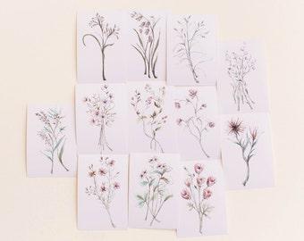 Beautiful Botanical Print Set, Set of 12 Floral Prints