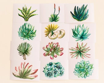 Succulents Print Set, Set of 12, Horizontal