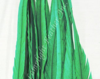 Coque Feathers, Green,  15-18 inch per 12 feathers,