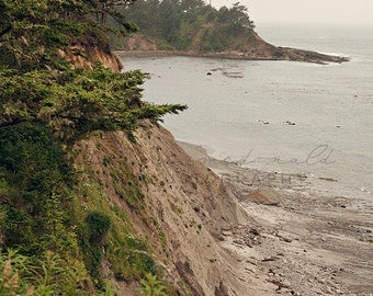 Oregon Coast II - Photographic Print - Forest, Coos Bay, OCH, green, Photography, Wall, Pacific, PNW, wanderlust, Hanging, Decor, Mist,