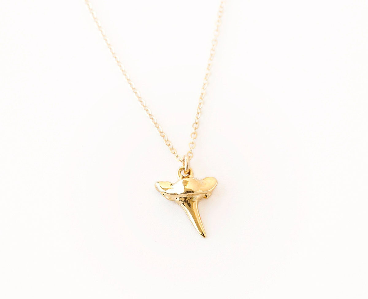 tiny shark tooth necklace delicate gold shark by