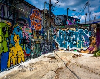 Graffiti on walls in an alley in Little Five Points, Atlanta, Georgia - Urban Photography Fine Art Print or Wrapped Canvas