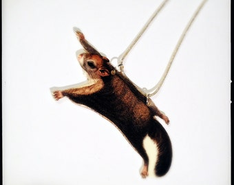 Rare Woolly Flying Squirrel Necklace - Eupetaurus Cinereus Colour Illustration Pendant