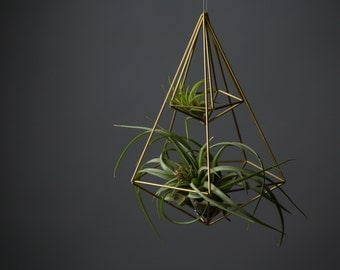 Himmeli Figure 1 || The Double Penta Planter || Modern Minimalist Geometric Hanging Ornament, Mobile, and Air Plant Holder