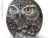 Original Hand Painted Little Owl Rock