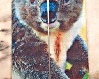 Koala Sock