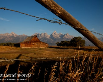 Mormon Row Barn ~ Grand Teton National Park - photographic print