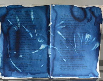 Scorched Petals - Original Cyanotype on Antique Book Pages