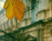 Autumn at Alhambra - Spain Landscape Yellow Leaf Building Fine Art Photography Print - Fall Mood Picture Gift