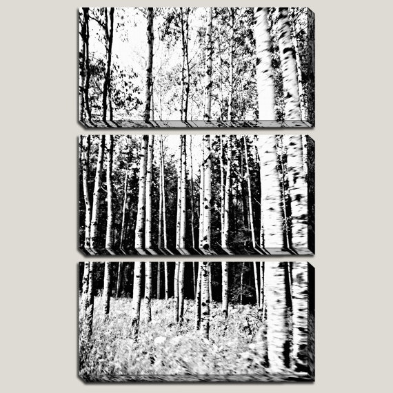 Birch Trees, Canvas Art, Original - Right Me Up - Black, White, Forest, Woods, Michigan, Triptych, 3 Panel, Home Decor, READY TO HANG