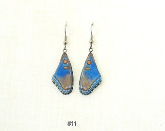 Butterfly Earrings in cold porcelain, Monarch, Blue Morph