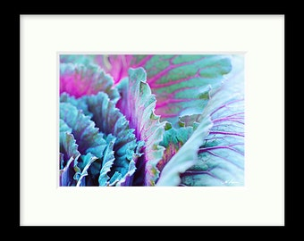 Flowering cabbage PRINT and CANVAS gallery wrap Flower Elegant Bathroom Photo Wall decor Artwork Home Bedroom Blue Turquoise Lavender Teal