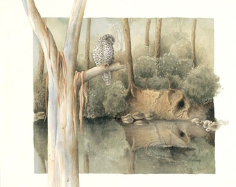 Powerful Owl and Platypus Original Watercolour Painting