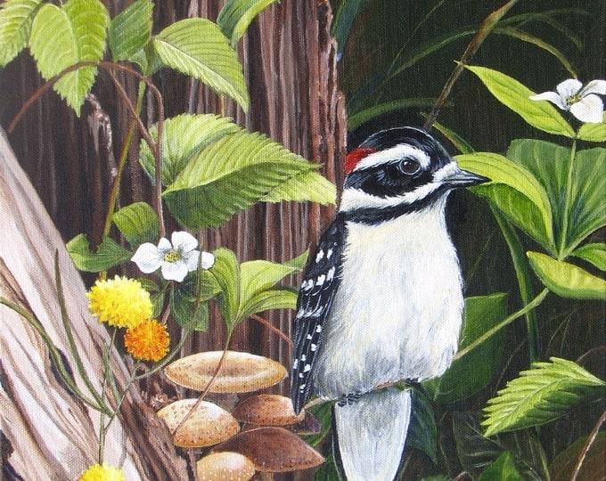 Downy Woodpecker - WOODLAND WONDERS - Print of a downy woodpecker, Canadian wildlife art, woodland plants, nature, wings, feathers