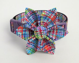 Colorful Weave Dog collar Set
