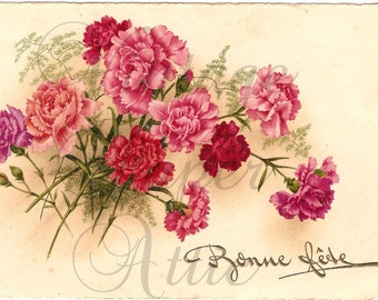 Pink Carnations Antique French Postcard Chromo Post Card from Vintage Paper Attic