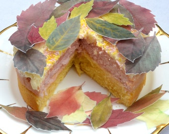Edible Autumn Leaves Cake Decoration