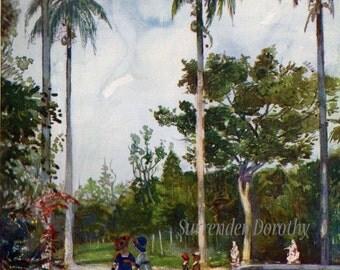 Botanical Gardens Rio A S Forrest 1910 Original Vintage Edwardian Watercolor Lithograph To Frame