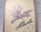 Box of Six: Albert's Barefoot Seamless Stockings Beigetone Size 10