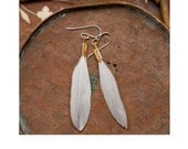 small white feather earrings