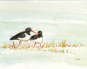Oyster Catchers Original Watercolor