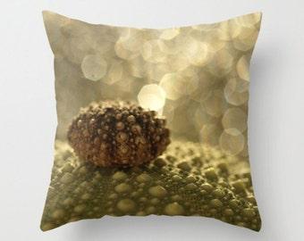 Urchin Pillow Cover Green Sea Urchin Natural History Bokeh Ocean Life Sea Decor Marine Biology Tiny Urchin Brown