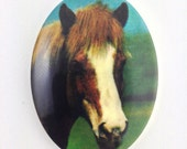 Vintage Brown and White Horse Acrylic Cameo 40x30mm (1) Germany cab748H