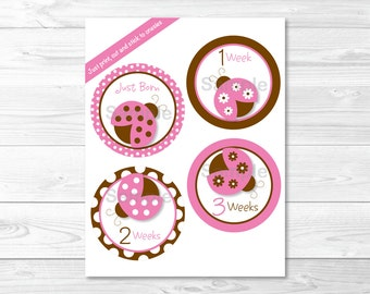 Pink Ladybug Monthly Milestone Stickers / Iron Ons / Printable INSTANT DOWNLOAD
