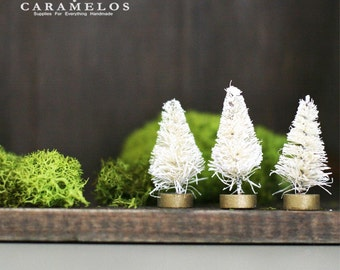 Set of 4 Miniature Ivory Bottle Brush Sisal Trees
