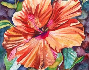 Tropical Hibiscus 5 8x10 print from Kauai Hawaii orange hot pink green